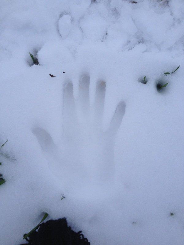 Vive la neige =^= (article innutile number 1 XDD)