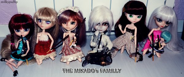 The power of mikado  ...  photo de groupe  ...  *BONUS*