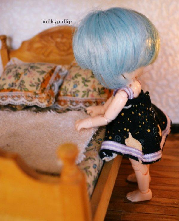 maison mini partie 3 ^^ entrée en scène de Axell :3