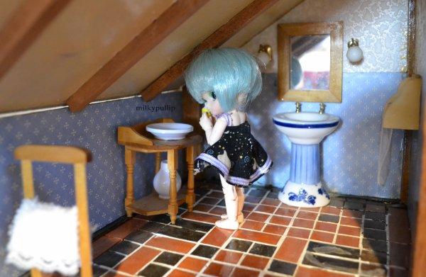 ma maison mini partie 4 >w<