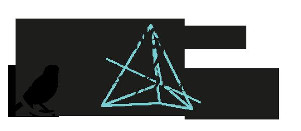LA MELANCOLIE DES CORBEAUX