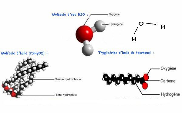 Blog de cuisine moleculaire tpe page 4 au bon b cher - Cuisine moleculaire pdf ...