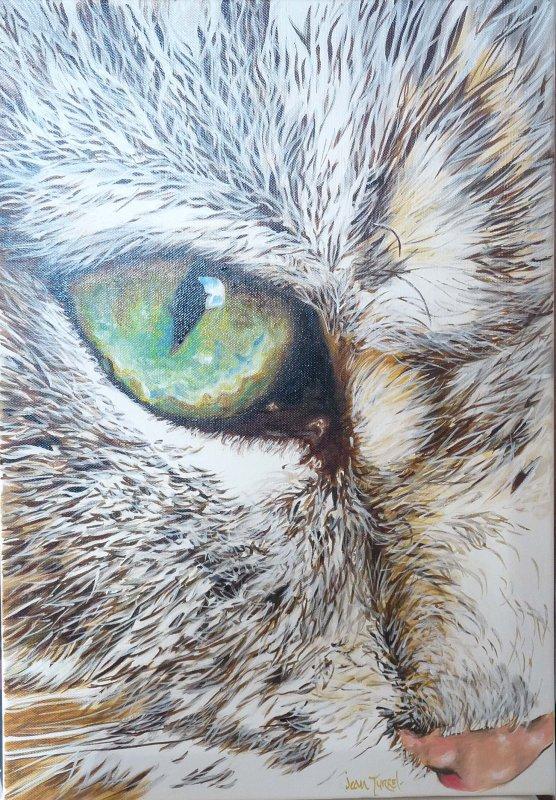 L 39 oeil du chat jean turrel superr alisme symbolique - Symbolique du chat ...