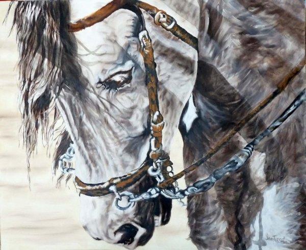 cheval bistre
