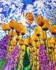Tulipes soleil