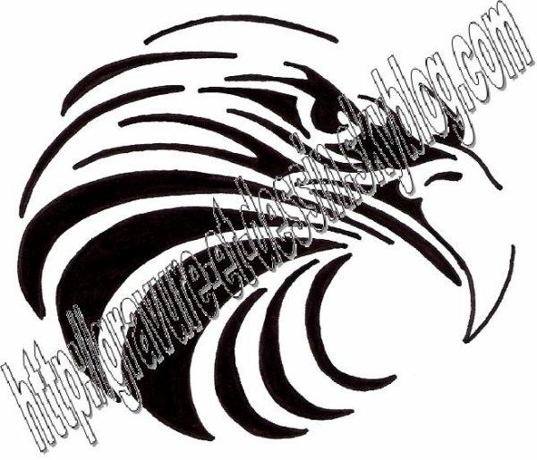 gravure aigle tribal 03
