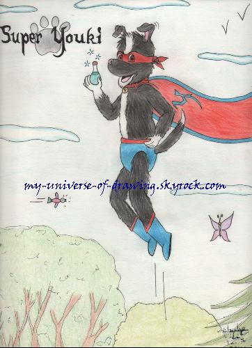 Super-Youki, la potion (terminé)