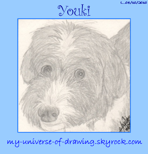 Youki portrait
