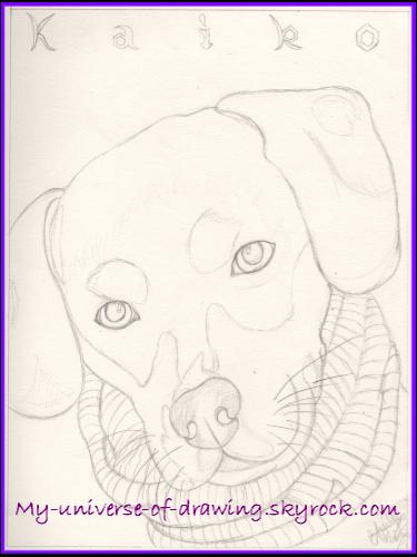 Kaïko (crayonné)