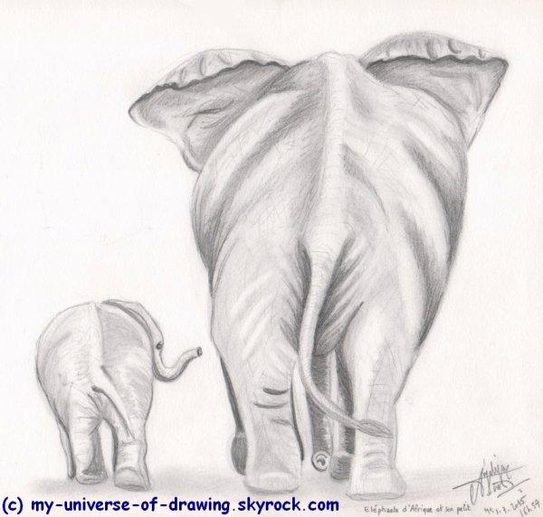 Elephante et son Petit