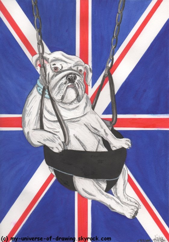 God save the Dogs !