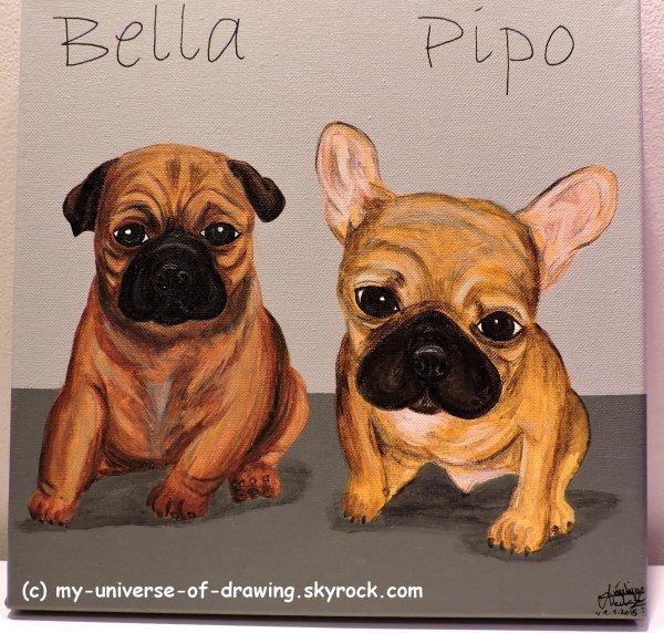 Bella & Pipo