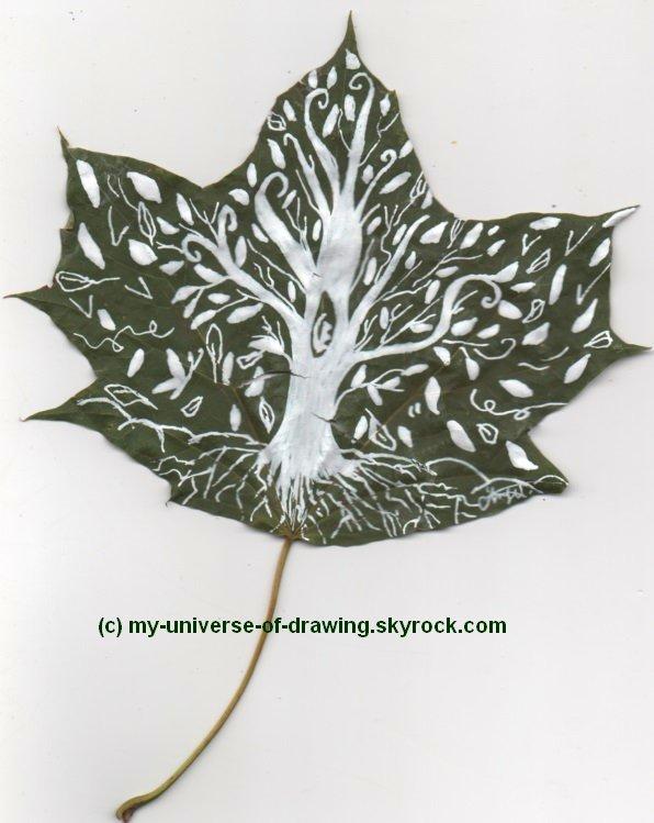 Dessins sur feuilles...