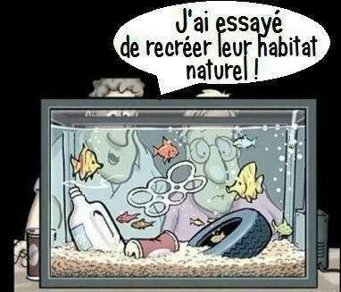Habitat naturel. ... bah oui !!!!