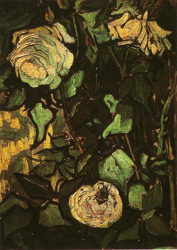 Vincent Van Gogh  , rosiers sauvages  et scarabée , Saint-Rémy-de-Provence,  juin 1890.