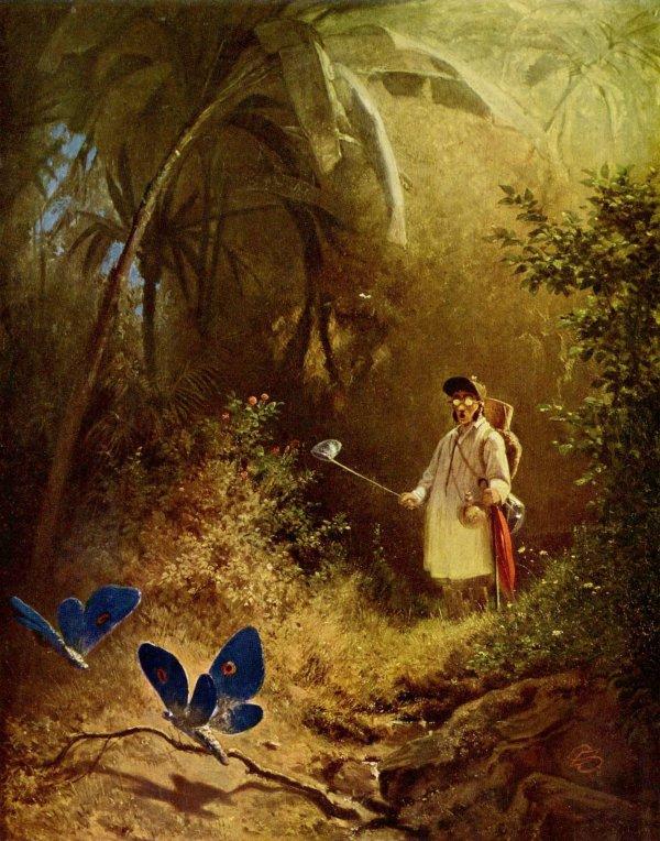 """Carl Spitzweg  ,  poète et peintre romantique  (1808-1885)   /   expression :  """" bouche bée  """"...  Le chasseur de papillons (1840)"""