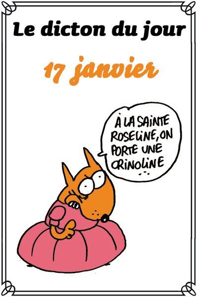 CRINOLINES...