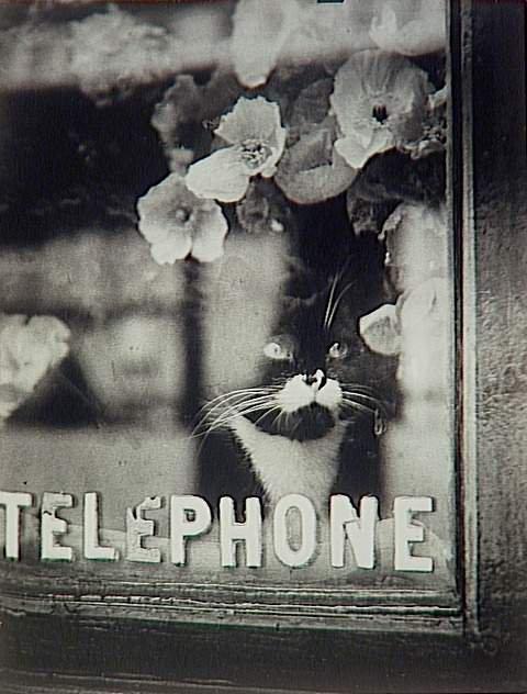 2 jolies photos de Brassaï    (1938)
