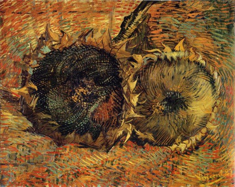 « Oh le beau soleil d'ici en plein été, cela tape à la tête et je ne doute aucunement qu'on en devienne toqué. Or l'étant déjà auparavant, je ne fais qu'en jouir. »  Vincent Van Gogh à Émile Bernard, Arles, 21 août 1888