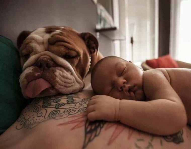 Dans la famille BOULI , je demande le père , le fils , le clebs...    :-)
