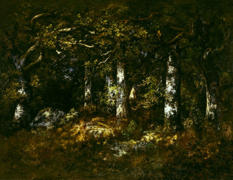 """ À travers les feuilles d'un bon livre on pourra entendre un écho qui ressemble aux bruits des forêts. ""  Henry  David  THOREAU  (1817-1862)  /   Narcisso Virgilio Diaz de la Peña (1809-1876) : Forêt de Fontainebleau , 1868 ( Dallas Museum of Art , Texas)"