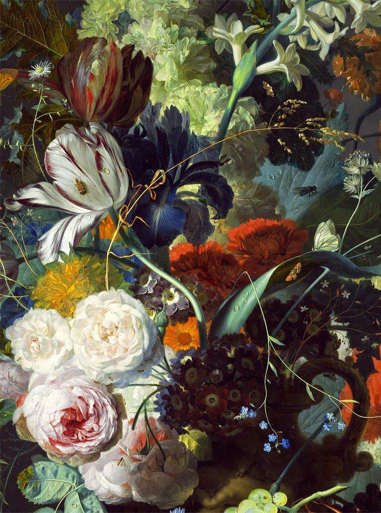 COUP DE COEUR   :    Jan Van Huysum  (1682-1749)