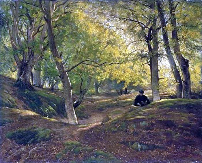 Constant  DUTILLEUX   (1807-1865)    : hêtraie