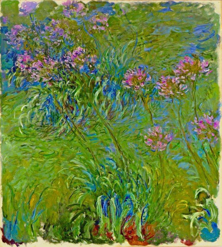 Claude Monet  (1840-1926) :      iris  /  agapanthe