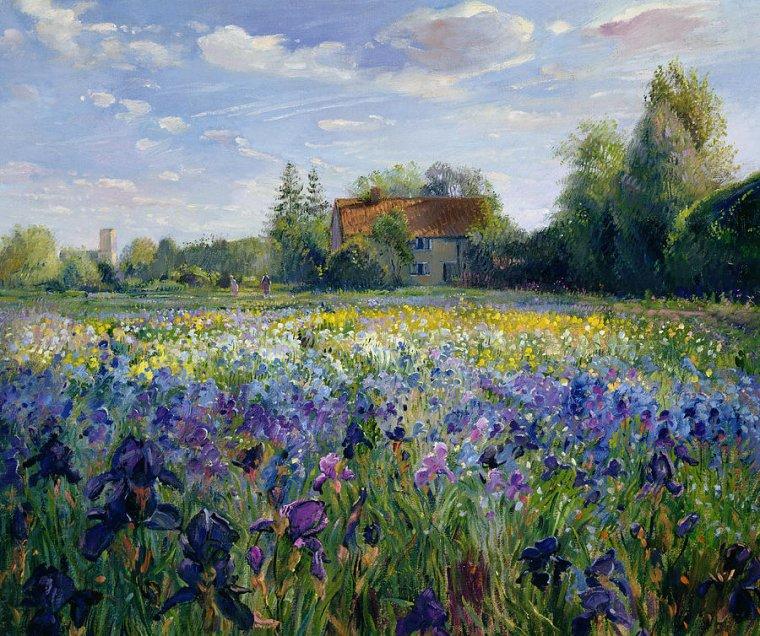 Des iris pour Dan   :-)    :  Timothy  EASTON  /  Emil  NOLDE  / Claude MONET /  Vincent  VAN  GOGH