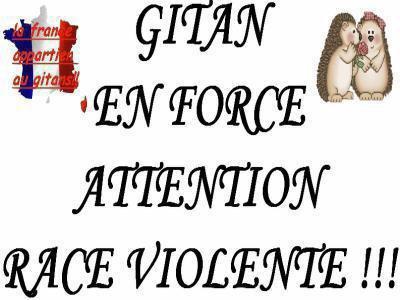 Blog de GITANDU29380