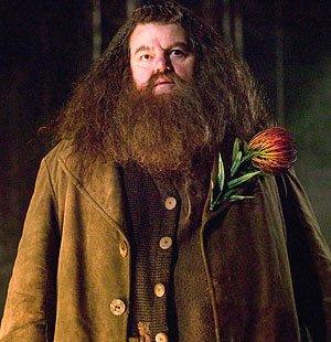 Rebeus Hagrid