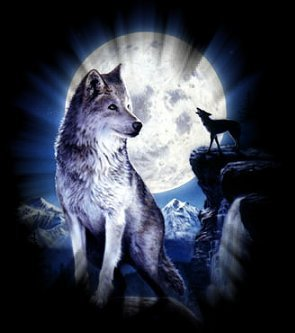 Blog de la-magique-des-loup