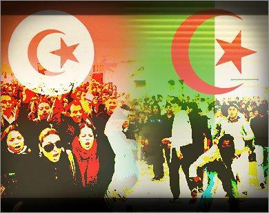 تحية تقدير و احترام لشعب التونسي الشقيق