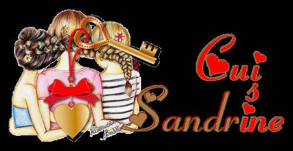 Sandrine (Créatrice du blog)