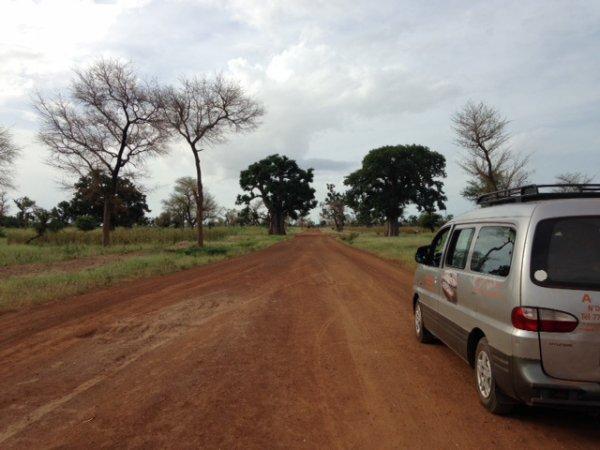 Ce dimanche, jour de repos bien mérité, notre chauffeur Adama nous emmène dans sa région, le Siné Salum. La piste pour y accéder est longue mais la végétation bien différente de la région de Bambey. Nous admirons toujours autant les baobabs et découvrons aussi les rizières, les manguiers, les anacardiers ( noix de cajou ), et les palmiers. Quelques poses photos s'imposent. Après 3 heures de route, nous arrivons à N'Dangane. Adama nous invite gentiment chez lui pour nous rafraîchir et nous présenter sa petite famille.   Le Siné Salum forme une région plate et marécageuse où se mélangent les eaux du fleuve Salum et celles de l'océan. C'est dans ce cadre magnifique, entre terre et mer, que nous avons eu le plaisir de recharger nos batteries et faute de douche à la maison, la baignade dans cette eau tiède a été plus qu'apprécié. Demain, nous reprenons le chantier; avec Ingrid, le repos est toujours de courte durée!!!