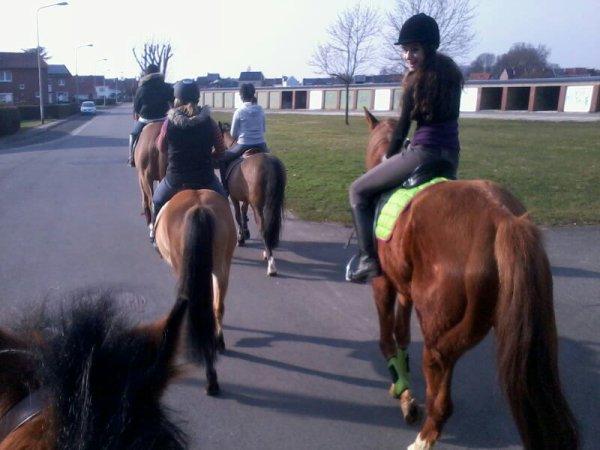 Journée zen a l équitation