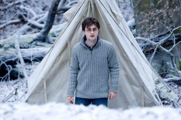 Chapitre 14: Le retour d'Harry