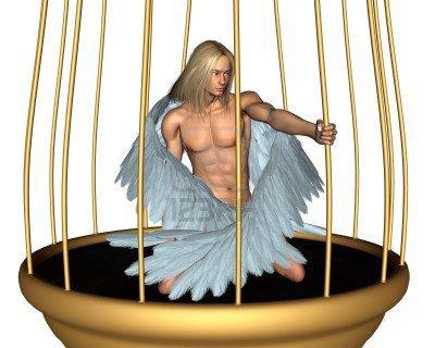 un ange dans une cage dorée