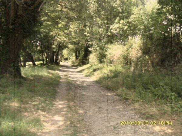> Le chemin de la vie ...