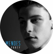 ☆☆☆Shawn Mendes : Life Of The Party☆☆☆