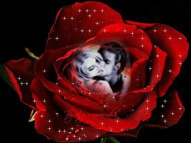 La Rose Rouge Abdou