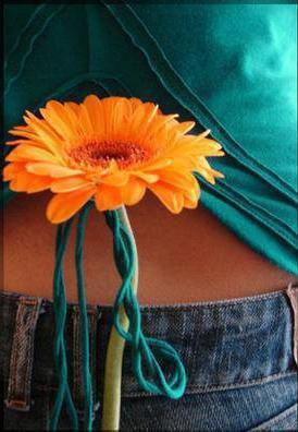 Une fleur immortelle
