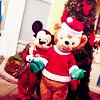 Disneyland Paris / Winder Hoedown (2013)