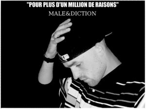 "1er MAXI ""POUR PLUS D UN MILLION DE RAISONS"" / Pour plus d un million de raisons (2011)"