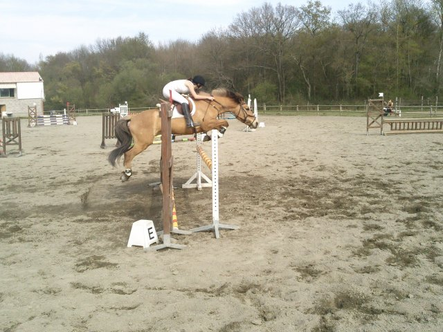 Blog de Xx-So-Horses-xX