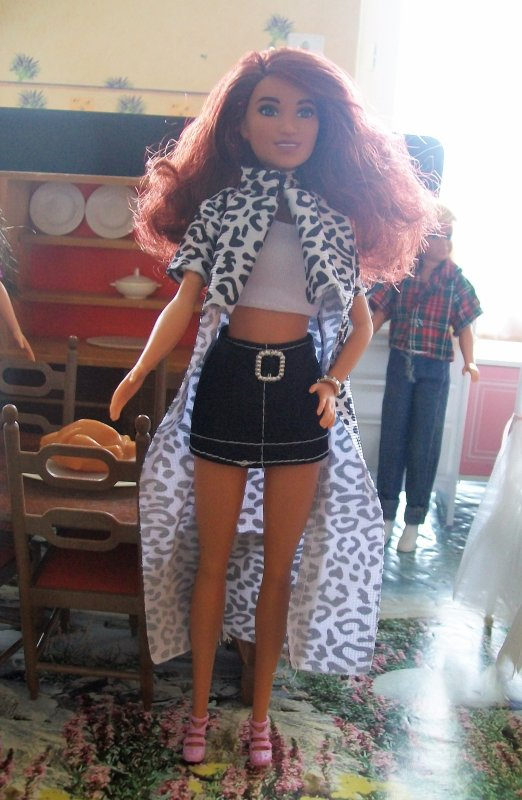 BARBIES  FASHIONISTAS