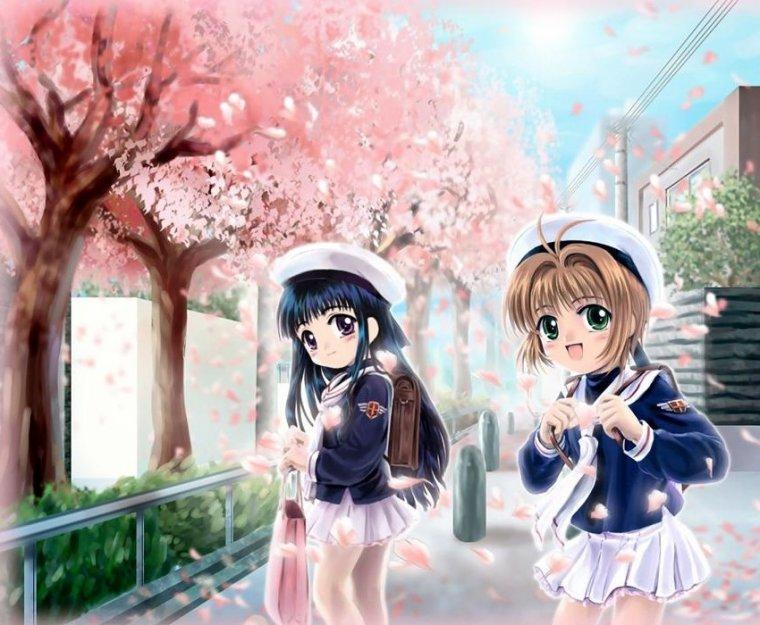 Sakura la chasseuse de cartes