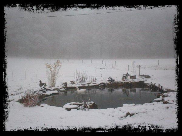 Fini les -20°c, mais avec le redoux, revoilà la neige.