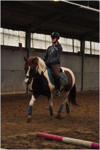 «Le cheval nous offre la possibilité d'échapper à la monotonie de notre vie.»