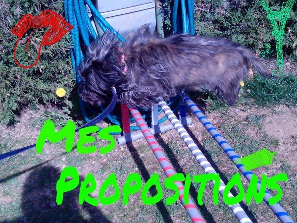 Mes Propositions =p !